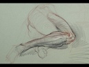 ANATOMY FOR ARTISTS: Living Anatomy-Lower leg (and thigh with pelvis) PART 1