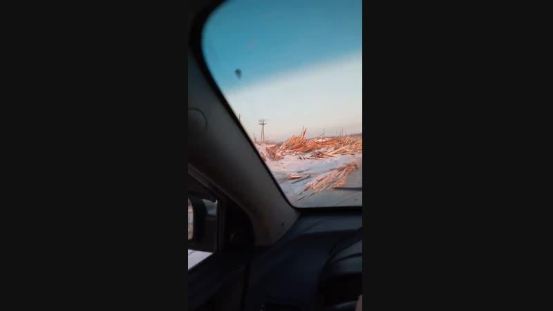 За Солнечным свалка отходов лесопиления 23.01.2019г