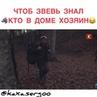КАХА И СЕРГО on Instagram На охоте😂😂😂 Авторы @artem karokoz @sergo artemka Ставь Лайк Like👍🏻 Пишите комментарии✏️ непосредствен