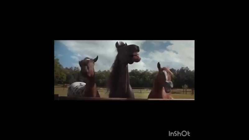 жизнерадостные кони