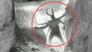 5 NIGHTMARE CREATURES CAUGHT ON CAMERA SPOTTED IN REAL LIFE!