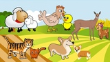 Learn Baby Animals and Animal Sounds in Mandarin Chinese!