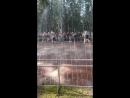 Шутейный фонтан в Петергофе