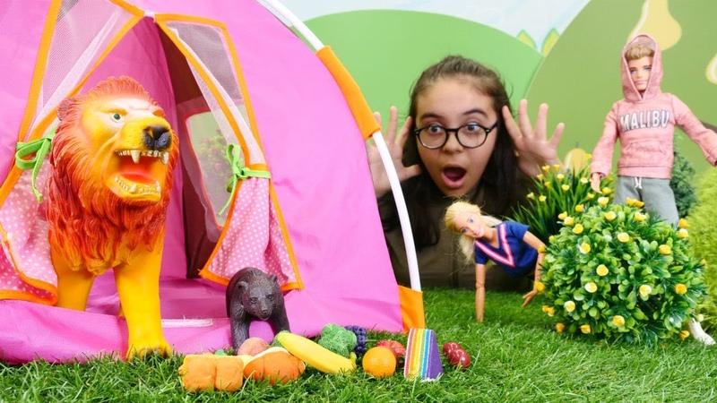 Barbienın kamp çadırına ayı giriyor! Çocuk videosu
