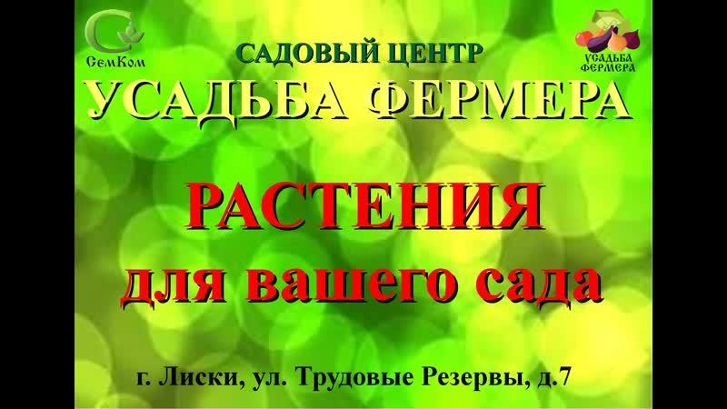 САДОВЫЙ ЦЕНТР ЛИСКИ 24 04 2019