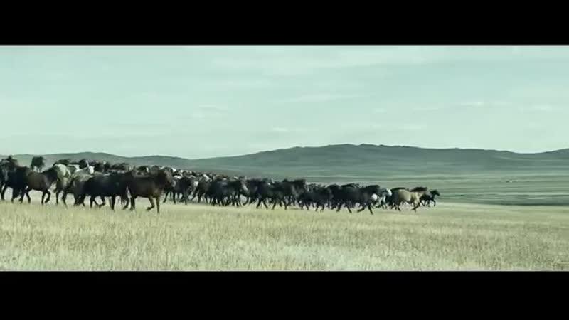 Хамаг Монгол Төсөл Чин Цагаан Галуу Өвөр Монголын Хишигтэн хошууны Дуучин Д Давш