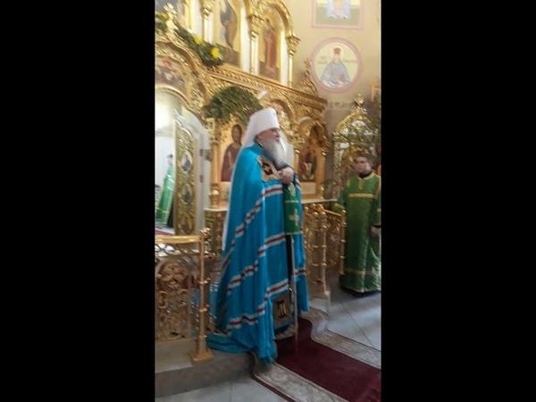 Поздравление митрополита с Днем Святого Духа