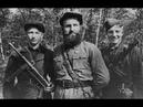 Секретная папка Партизанские войны как выжить в лесу