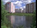 В Ярославле Экодесант очистил пруд на улице Папанина