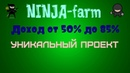 NINJA farm Нестандартная ферма высокий доход