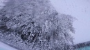 ☀ Winter morning. Pawel Drobin [Spinner Tournament]