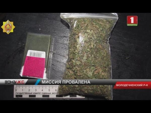 В Молодечненском районе задержали потребителя и сбытчика марихуаны Зона Х