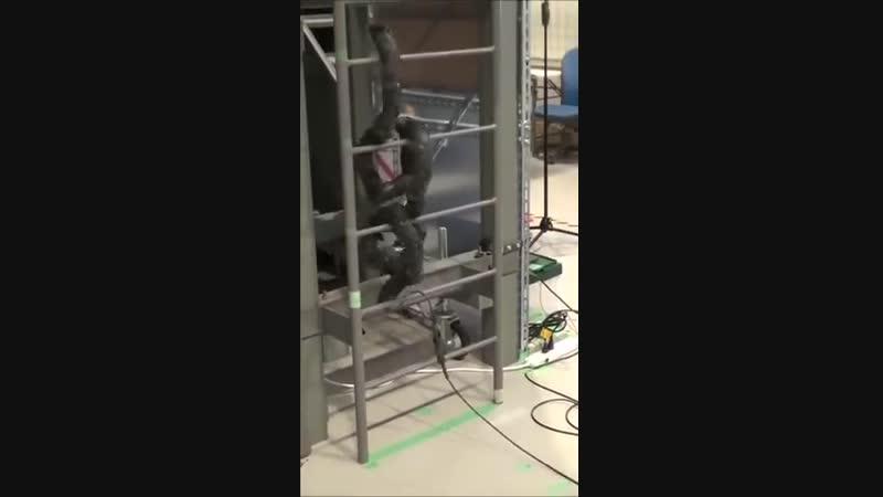 Робот змея поднимается по лестнице