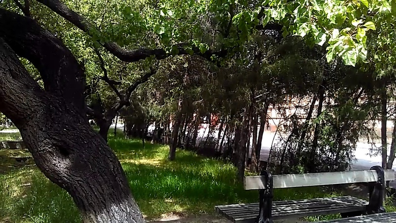 Внеший дворик храма Гаяне, парк и некрополь, май 2019 | туризм в Армении