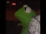 Kermit the frog as Usher (Vine)
