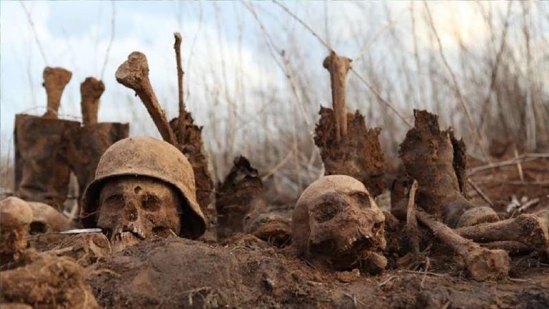 Торговлю телами фашистов раскрыли в Ростове