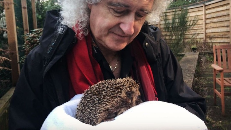 Брайан Мэй Queen Филомена и я сегодня днем Brian Harold May on Instagram Philomena and me this afternoon Bri""