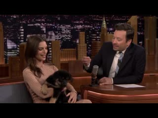 Emily Ratajkowski Debuts the Cutest Puppy Alive on The Tonight Show 720p
