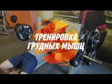 Тренировка мышц груди. Мощный трисет на грудные мыщцы. Тренажерный зал Citrus Fitness