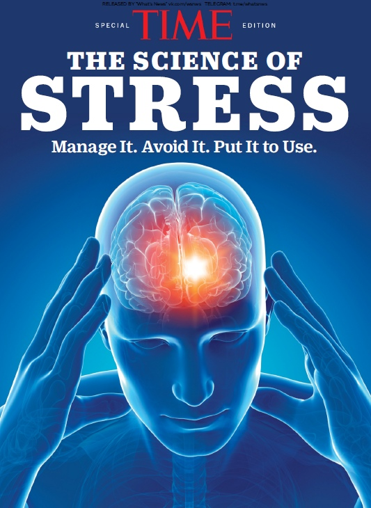 Time - The Science of Stress