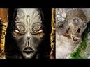 Эти факт не освещается мировыми СМИ и не обсуждается широкой публикой Тайны древних цивилизаций