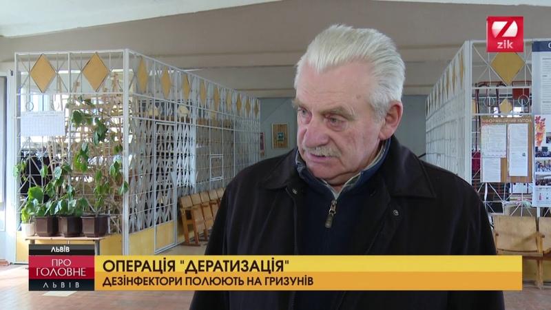 Львівські дезінфектори розпочали весняне полювання на гризунів