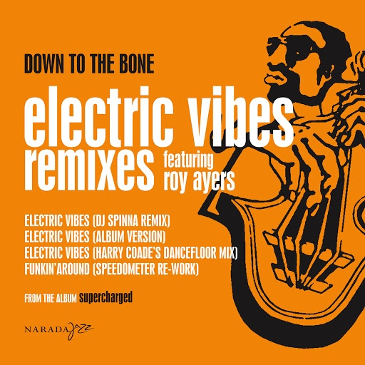 Down To The Bone альбом Electric Vibes (Remix)