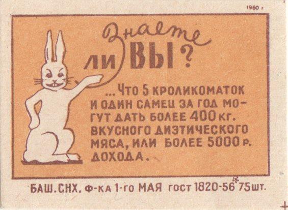 Кролики это не только ценный мех, но и ...