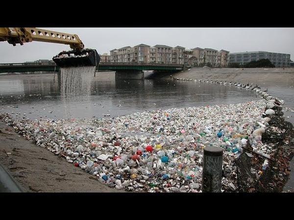 Тюремные сроки и огромные штрафы: как в мире борются с бесконтрольным использованием пластика?
