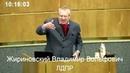 Жириновский , заткнись , придурок ты