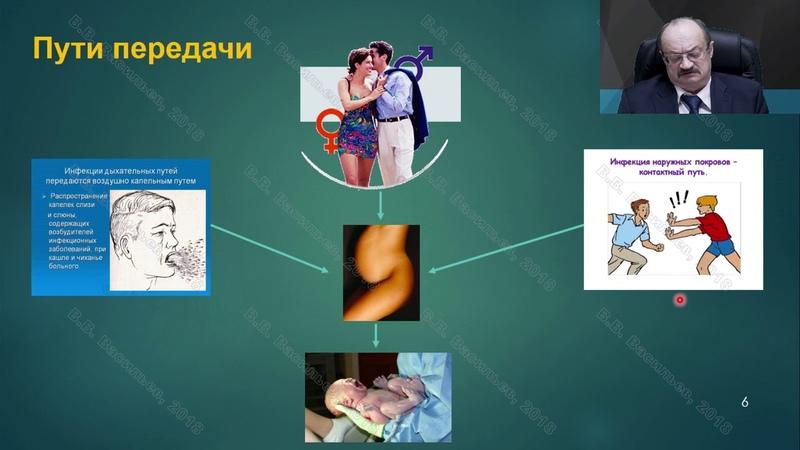 Профессор Васильев В.В. Герпетические инфекции