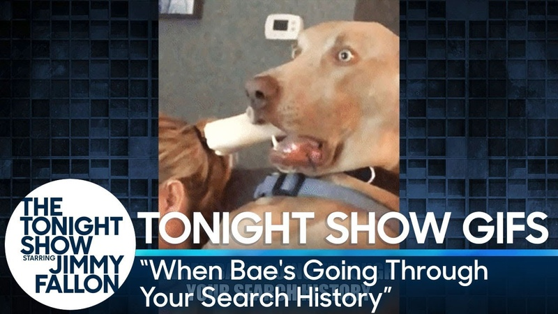 Tonight Show GIFs When Bae's Going Through Your Search History