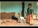 South India Tamil Nadu and Kerala Part 1 Tamil Nadu