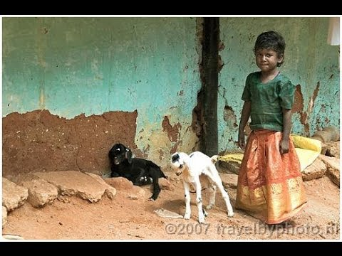South India (Tamil Nadu and Kerala) Part 1 Tamil Nadu