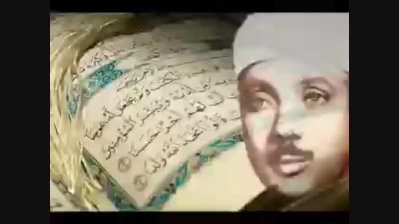 Маша Аллох