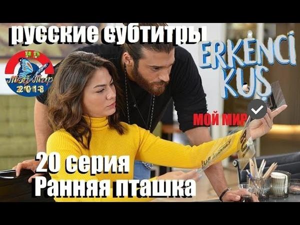 Ранняя пташка 20 серия русские субтитры от Турксинема