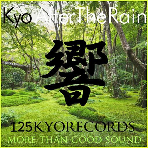 KYO альбом After The Rain