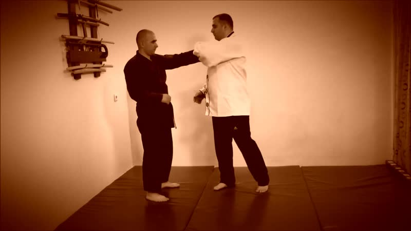 Rebel Hapkido Series 합기도 By Vidadi Hajiyev (46)