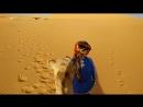 Hey-hey from Sahara