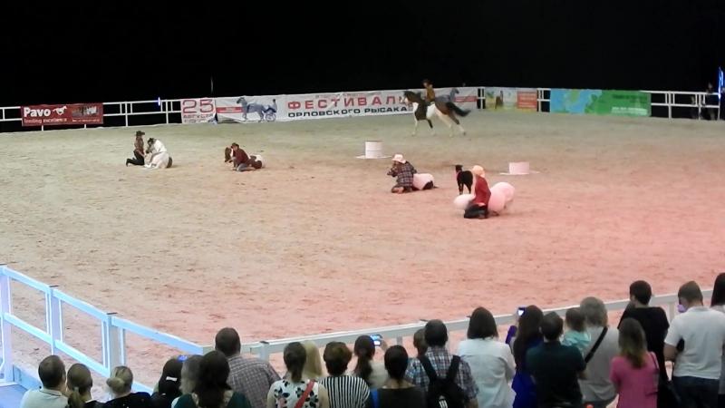 Мелкие лошадки и жеребёнок.