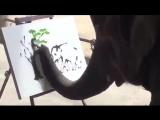 Художник с хоботом
