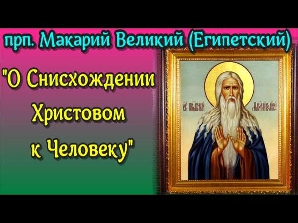 О Снисхождении Христовом к Человеку - Прп. МАКАРИЙ ВЕЛИКИЙ (Египетский) | Беседа 7