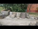 27. Ольвия - древнее поселение скифов (5-2 вв. д.н.э.)