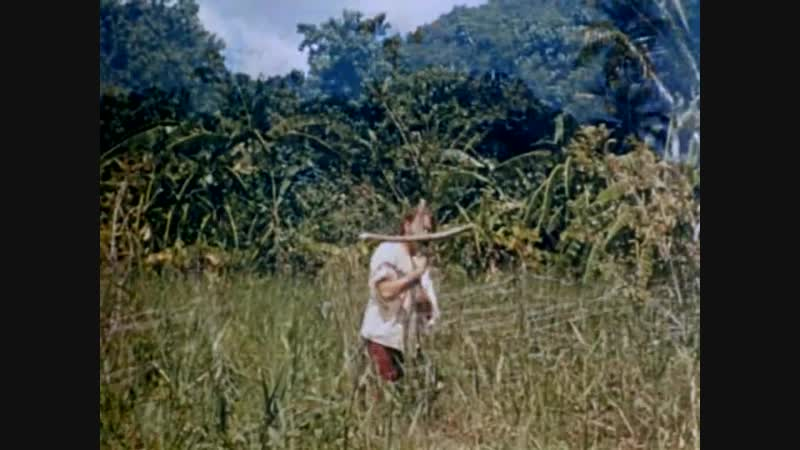 РОБИНЗОН КРУЗО (1954) - Луис Бунюэль