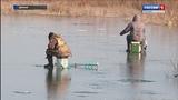 Опасный лед Власти Костромской области озаботились безопасностью на воде зимой