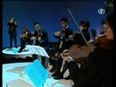Vivaldi - Concerto in re min per viola damore, liuto, archi e cembalo RV 540 Il Giardino Armonico