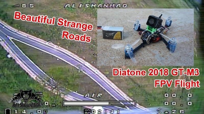 Tree in the Road Diatone 2018 GT-M3 Crucifix FPV Racing Drone