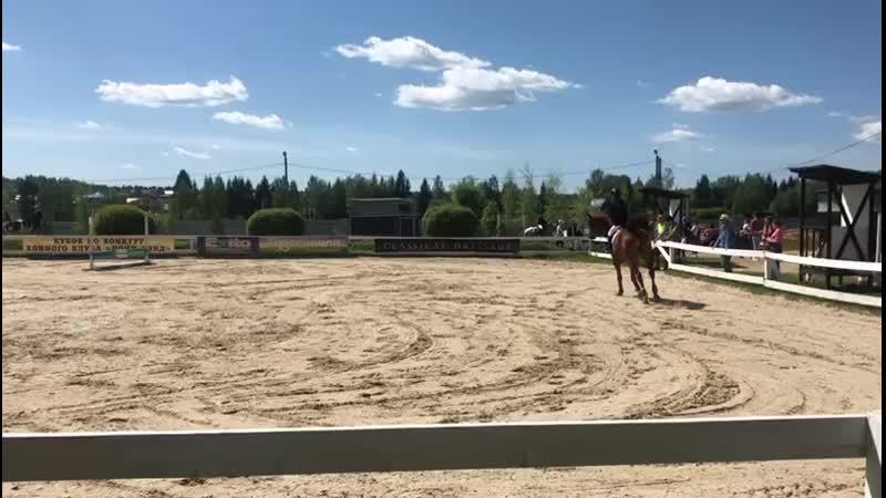 KK pony land 19.5.19 Гнатышин Дарья на Палисаде, 60сс