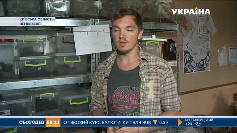 Щасливий павук та енімал - терапія)0 Вгостях був телеканал - Україна)