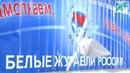 Региональный этап конкурса «Белые журавли России»